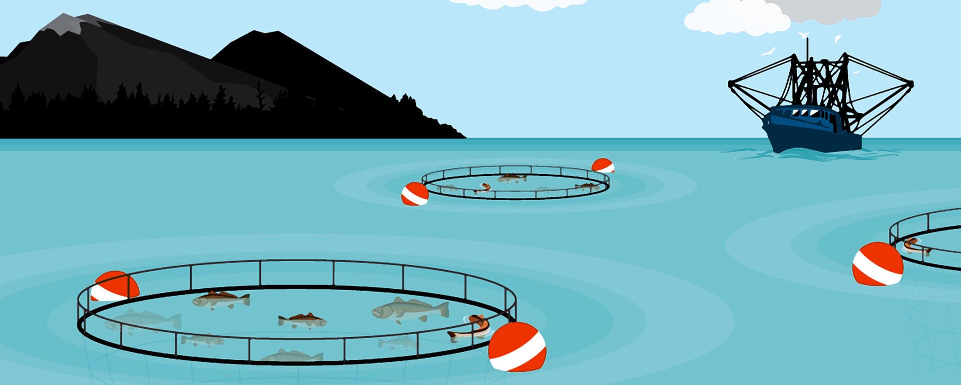 Aquaculture - India is the next big destination.