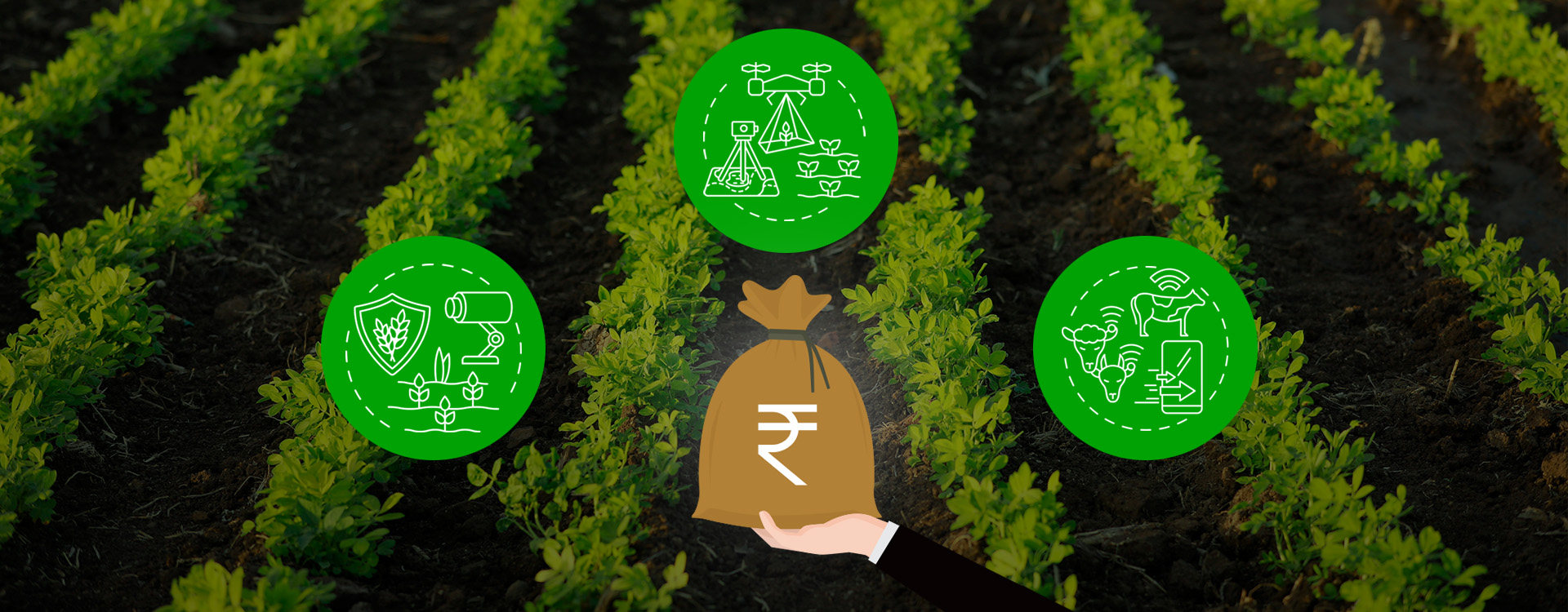 Dvara E-Registry benefits the agri-value chain by leveraging AI and ML to help generate farm insights.